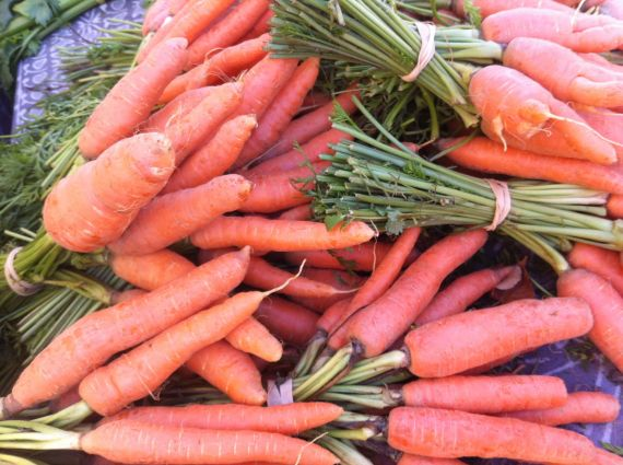 Locally grown carrots