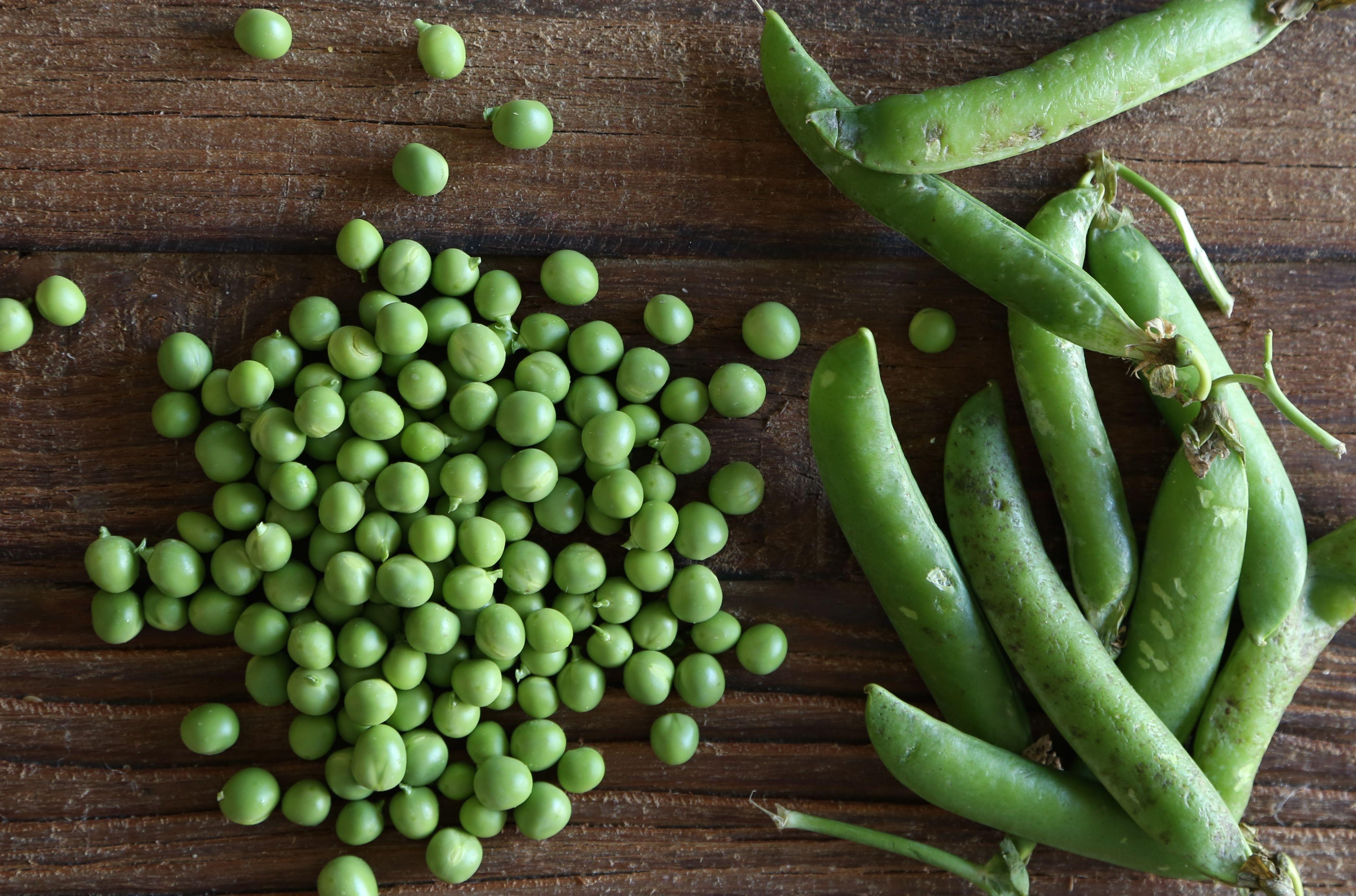 Halibut On Minted Fava Bean And Pea Puree Recipes — Dishmaps
