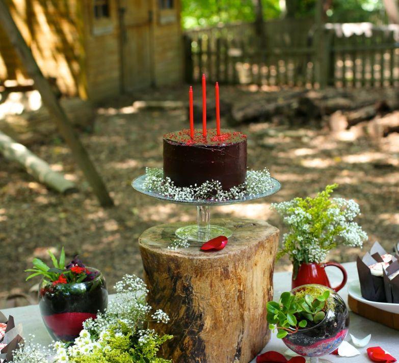 Terrarium Workshop Birthday Party